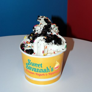 Sweet Savannah's FROYO - Louisville, KY