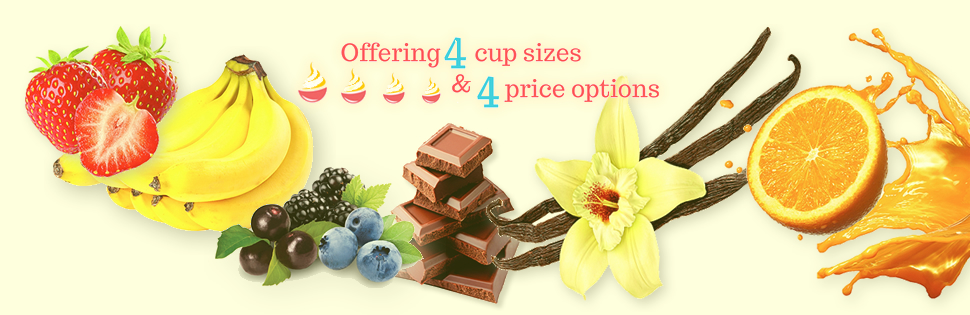 Froyo at Sweet Savannah's - four sizes four price options
